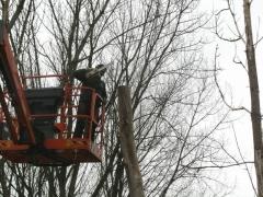 Inkorten bomen met hoogtewerker