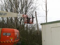 Trimmen bomen met hoogtewerker
